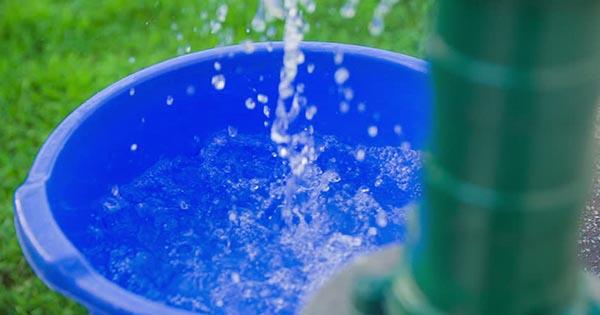 Risultati immagini per bacinella di acqua